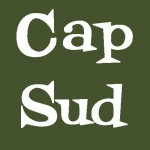 LOGO de CAP SUD carré vert